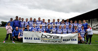 2017 Div1 HL Final Coill Dubh v Naas